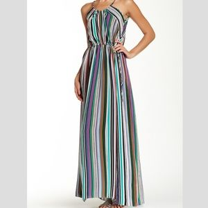 Calypso St. Barth Margi Silk Stripe Maxi Dress